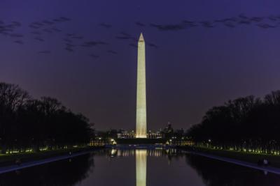 The Washington Monument Seen in the Reflecting Pool at Dusk with a Flock of Geese by Jonathan Irish