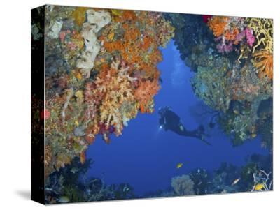 Diver Inspects Reef, Raja Ampat, Papua, Indonesia