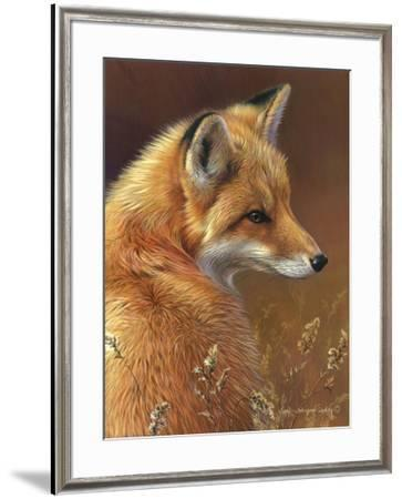 Curious - Red Fox