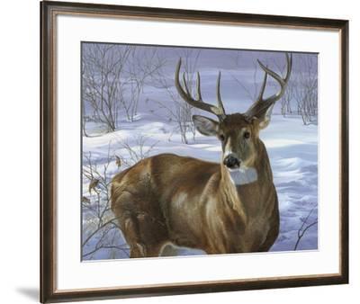 Through My Window - Whitetail Deer