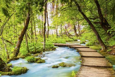 Croatia, Dalmatia, Karlovac, Plitvice, Plitvice national park, High lakes