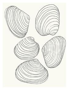 Clams by Jorey Hurley