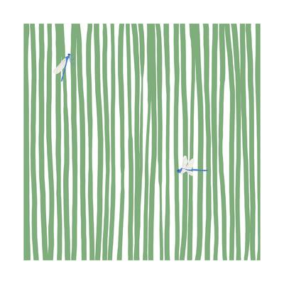 Dragonflies in Stripes