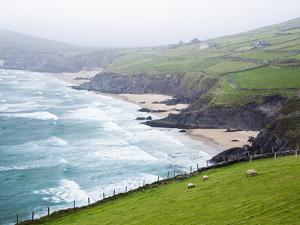 Beaches at Slea Head on Dingle Peninsula by Jorg Greuel