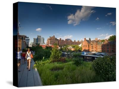 People Walking in New York's High Line