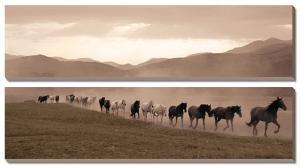 Moving Forward by Jorge Llovet