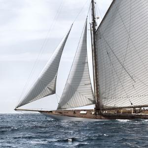 Sailing South by Jorge Llovett