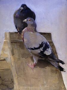 Pigeons on the Roof by Joseph Crawhall