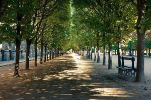 Palais Royal by Joseph Eta