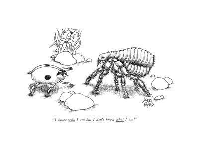 """I know who I am but I don't know what l am!"" - New Yorker Cartoon"