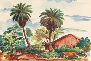 Near Moanalua Gardens Honolulu, Hawaii - United Air Lines by Joseph Fehér
