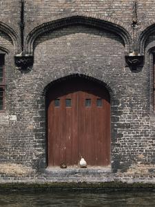 Two Ducks Sit in Doorway That Opens Directly onto a Canal by Joseph H. Bailey