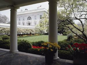 View of the Rose Garden from the White House by Joseph H^ Bailey