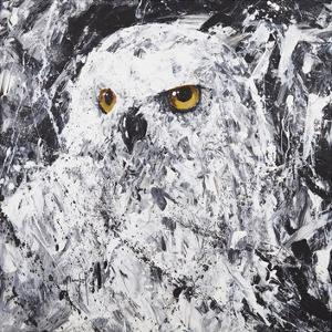 Owl III by Joseph Marshal Foster