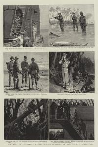 Our Navy in Australian Waters, a Day's Shooting in Moreton Bay, Queensland by Joseph Nash