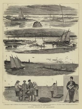 Oyster Culture at Arcachon by Joseph Nash