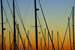 Silhouettes of Sail Boat Masts and Twilight Sky by Joseph Shields