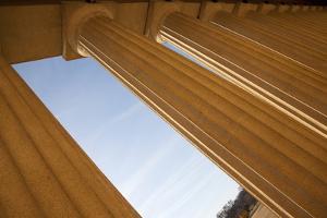 Columns of the Parthenon, Centennial Park, Nashville, Tennessee by Joseph Sohm