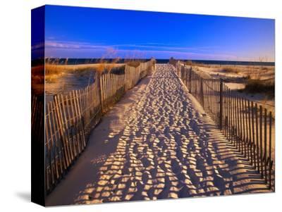Sand Trail on Santa Rosa Island