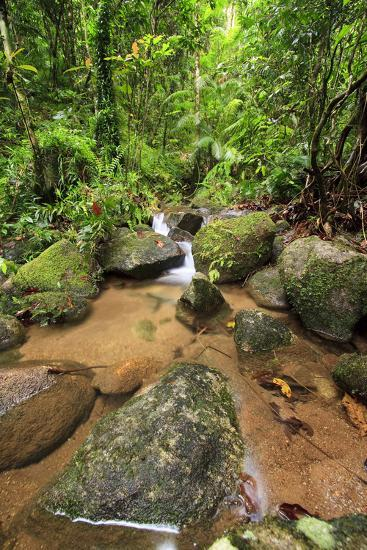 Josephine Falls Is One of the Most Popular Sets of Waterfalls on the South Side of Cairns-Paul Dymond-Photographic Print