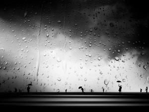 Three Umbrellas by Josh Adamski