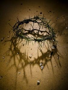 Crown of Thorns with Large Shadow and Pieces of Rock by Joshua Hultquist