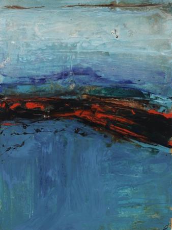 Swift Focus II by Joshua Schicker