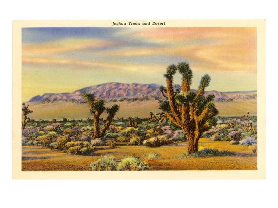 Joshua Trees--Art Print
