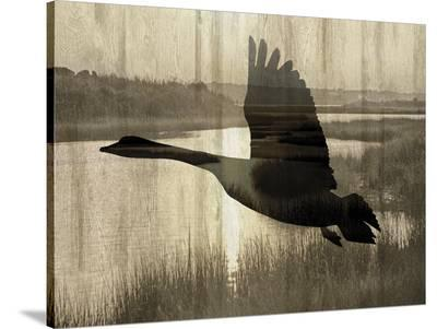 Journey-Tania Bello-Stretched Canvas Print