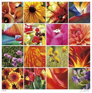 Floral Square Ensemble by Joy Doherty