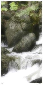 In the Flow II by Joy Doherty
