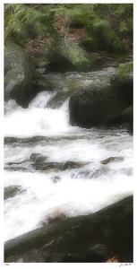 In the Flow III by Joy Doherty