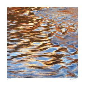 Liquid Gold Square 3 by Joy Doherty