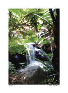 Peaceful Waterfall I by Joy Doherty