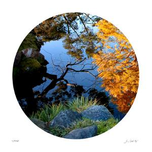 Serenity Reflection 1 by Joy Doherty