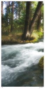 Serenity Stream I by Joy Doherty