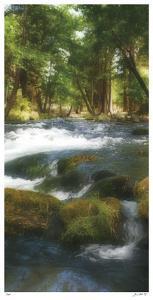 Serenity Stream II by Joy Doherty