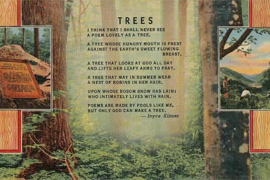 Joyce Kilmer Trees Poem, Forest--Giclee Print