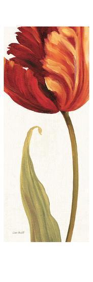 Joyful II-Lisa Audit-Art Print