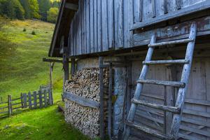 Log Piles In Alcove Outside Farm Building, Triglav National Park, Trenta Valley by Juan Carlos Munoz