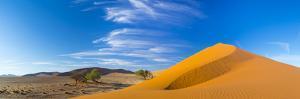 Sand Dunes with Some Desert Vegetation at Base, Namib-Naukluft National Park, Namibia, June 2015 by Juan Carlos Munoz