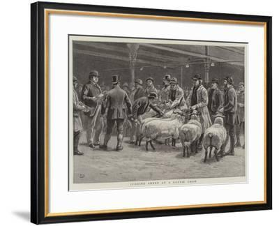 Judging Sheep at a Cattle Show-Frank Dadd-Framed Giclee Print