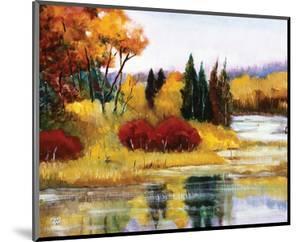 Colorado Fall Dream by Judith D'Agostino