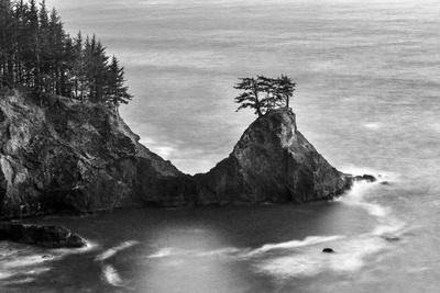 Black and White Image of Jutting Rock Formations with Trees Along the Pacific Ocean after Sunset