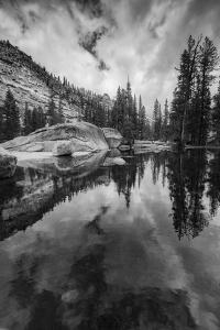 California, Yosemite National Park by Judith Zimmerman
