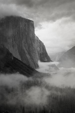 California. Yosemite National Park