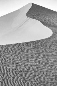 USA, Mojave Trails National Monument, California. Black and white image of windblown sand dune. by Judith Zimmerman
