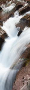 USA, Montana. Avalanche Creek, Glacier National Park. by Judith Zimmerman