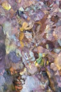 Utah. Abstract Design Formed by Water Rushing over Colorful River Rocks in Hunter Canyon, Moab by Judith Zimmerman