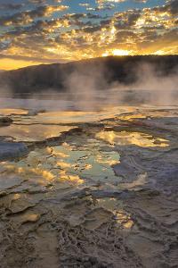 Wyoming, Yellowstone National Park by Judith Zimmerman
